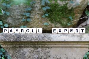 Payroll-Expert-800